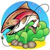 最爱鲤鱼嘴